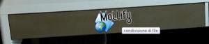 condivisione file con mollify